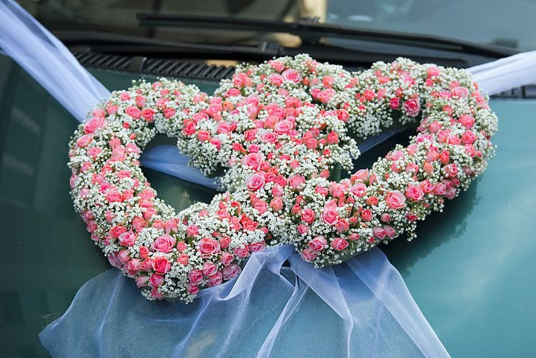 Background Beauty In Nature Car Decor Celebration Close-up Day Event Flower Flower Heart Fragility Freshness Growth Heart Shape Hearts Holiday Love Nature Outdoors Pink Roses Plant Two Hearts Wedding Wedding Car Wedding Decor Wedding Details