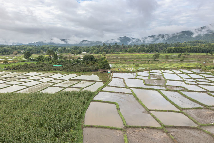aerial view of village landscape near Chiangdao town over clouds in Thailand Clouds Village Freedom High Minimalist RISK Rural Sky And Clouds Aerial Aerial Landscape Aerial Photography Aerial View Air Feet Flight ✈ Flightview Flying Girl High Angle View Inspiration Landscape Mist Sky Swing Women