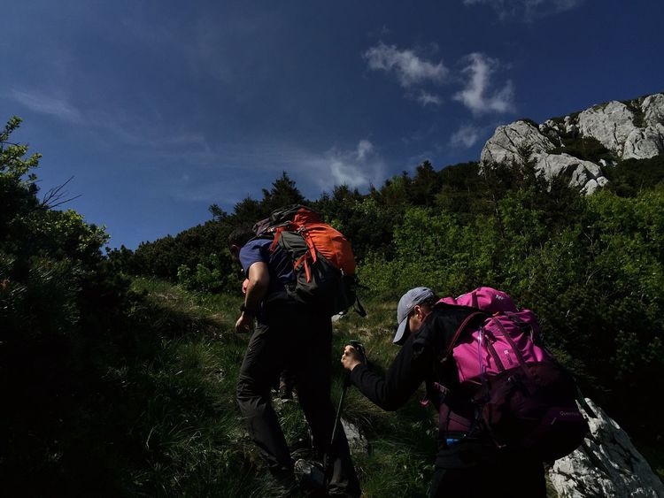 Climb towards Veliki Risnjak mountaintop, Croatia, 2018. Climbing Climb Hiking Plant Tree Real People Sky Lifestyles Nature One Person Leisure Activity Beauty In Nature Outdoors