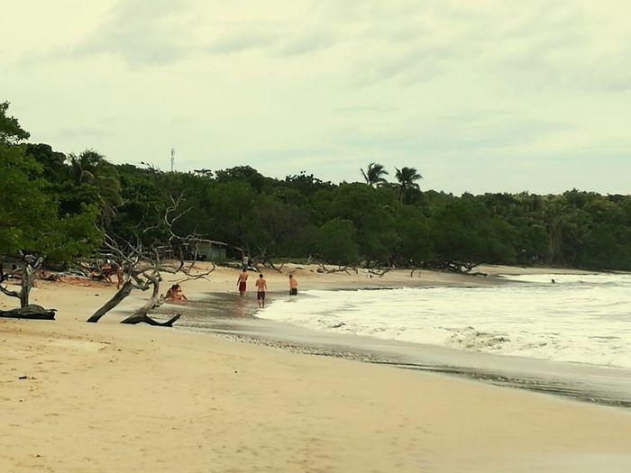 Playa Avellnas,