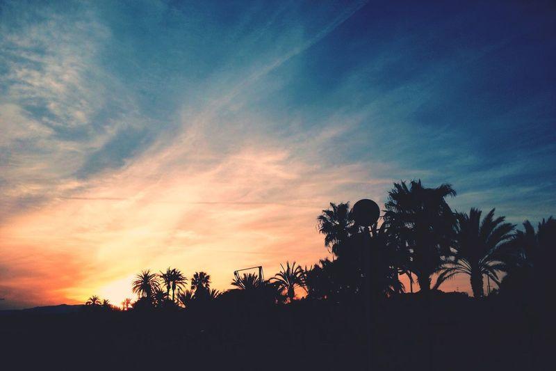 Sunset Silouette TBT