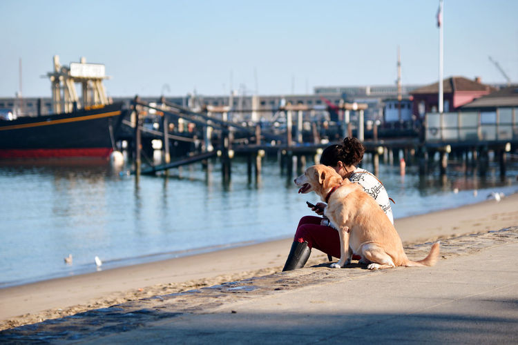 Woman sitting with dog on footpath by beach