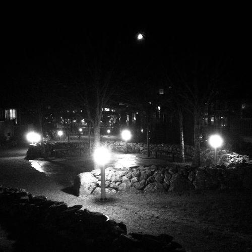 Illuminated street light in city at night