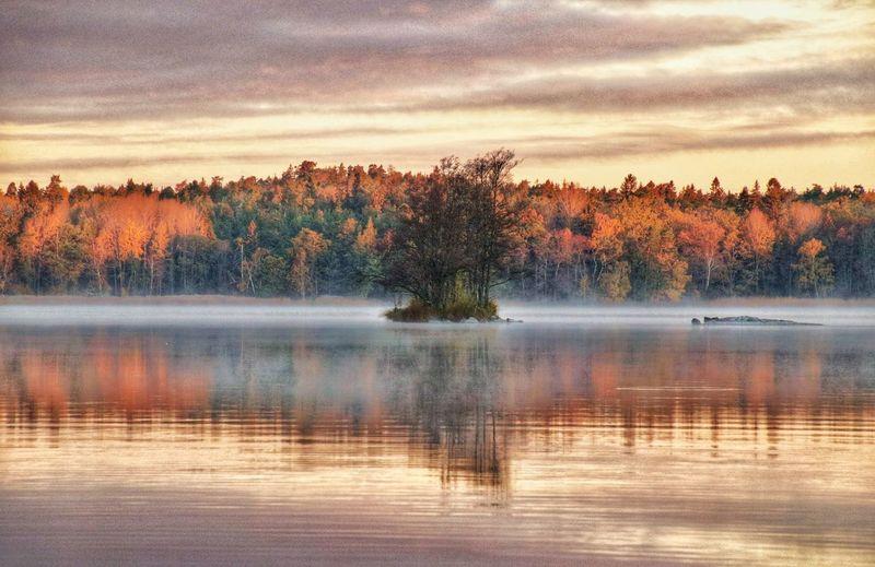 #Lake #autumn