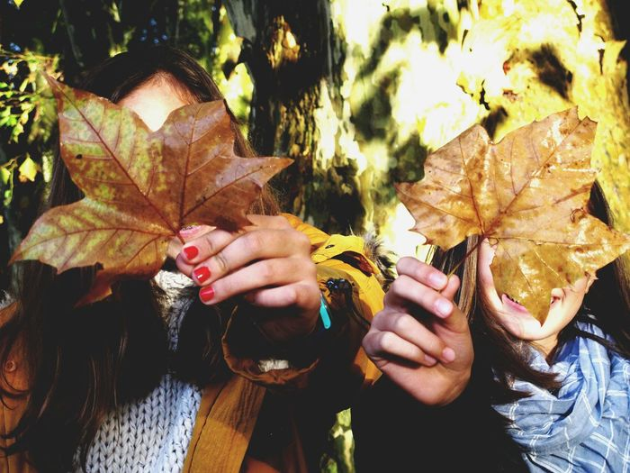 Autumnal Hide & Seek Tadaa Community Autumn Leaves NEM Submissions Vscocam EyeEm Nature Lover NEM Street AMPt_community EyeEm Best Shots Autumn Colors