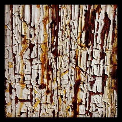 Halden Oldpaint Wood Rusty beautiful Norway lovely love old