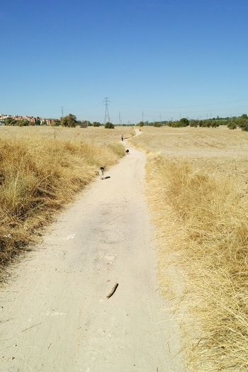 The path CClear