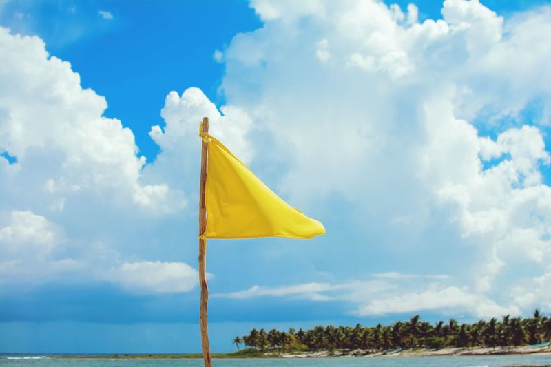 Calm Cloud - Sky Sky Yellow Flag Nature No People Day Outdoors Tranquility Wind Scenics - Nature