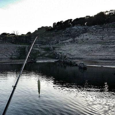 Ready to catch! Oggi sulla via del ritorno...ieri mattina si partiva così! Livingstonlures Livingstonluresprostaff Bassfishing Fishing Thewaterismystadium Topwater Bigbass
