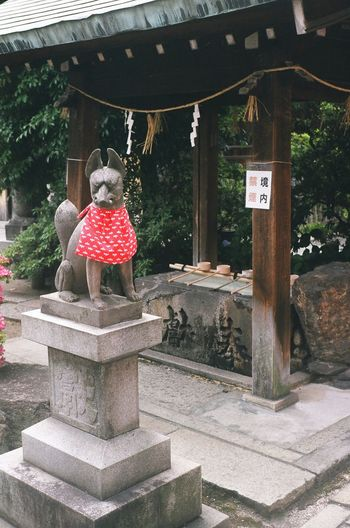 Japan Nagoya Oinarisan Oinari-sama Japanese Shrine Shinto Shrine Fox 大須観音に近い富士浅間神社