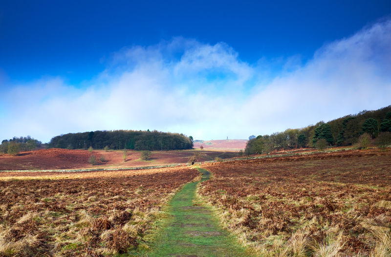 Bradgate park . Sky Landscape Environment Tranquil Scene Land Tranquility Nature Scenics - Nature No People Cloud - Sky Field Beauty In Nature Day Dirt The Way Forward Direction Plant Blue Non-urban Scene Rural Scene Outdoors Trail Long Parks And Recreation WoodLand Woods Tree Outdoor Photography My Best Photo