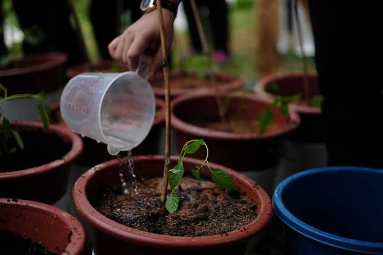 Investing In Quality Of Life Nature The Week On EyeEm Watering Plants Close-up Container Day Focus On Foreground Fragility Freshness Growth Human Hand Nature One Person Outdoors Plant Planting Potted Plant Real People Stories From The City