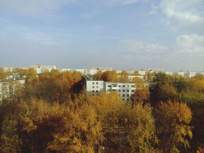 Autumn Hello World Beautiful Day