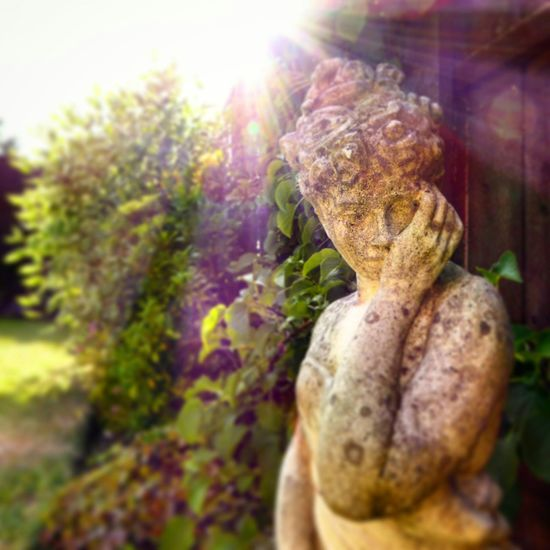 Garden Statue. EyeEm Best Shots Garden Photography Taking Photos Light And Shadow