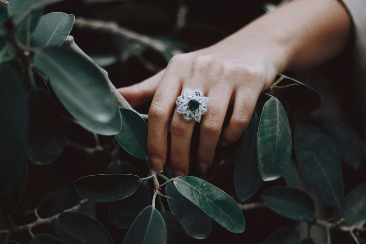 Show of hands Human Hand Jewelry Hand Ring Leaf Human Body Part Plant Part Close-up Plant Human Finger Focus On Foreground Women Nature Finger Leaves Day