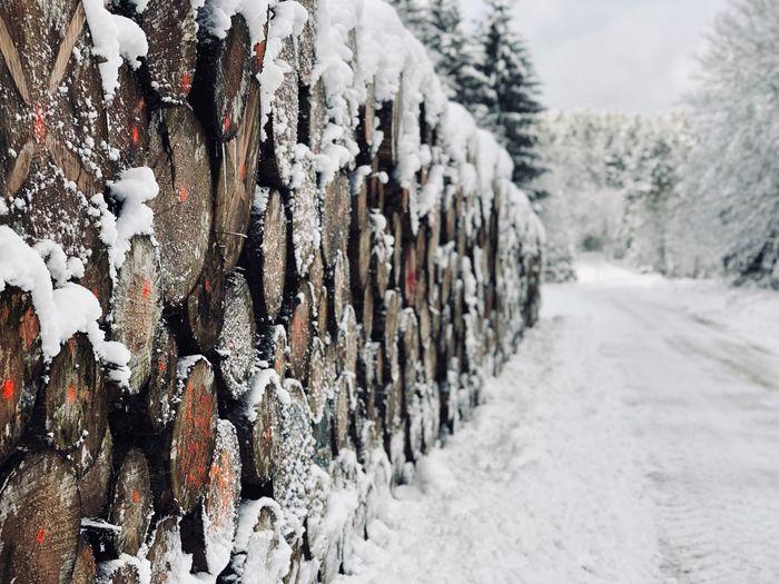 Snow ❄ Wood -