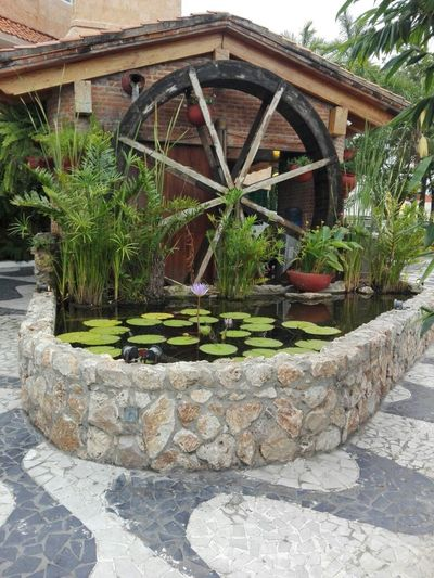 Hydraulic water wheel