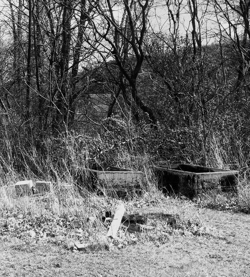 Blackandwhite Photography Empty Grave Empty Crypt Stone Burial Creepy Cemetary Vintage Burial Lost In Time Lost Crypt Check This Out Tranquil Scene Showcase April