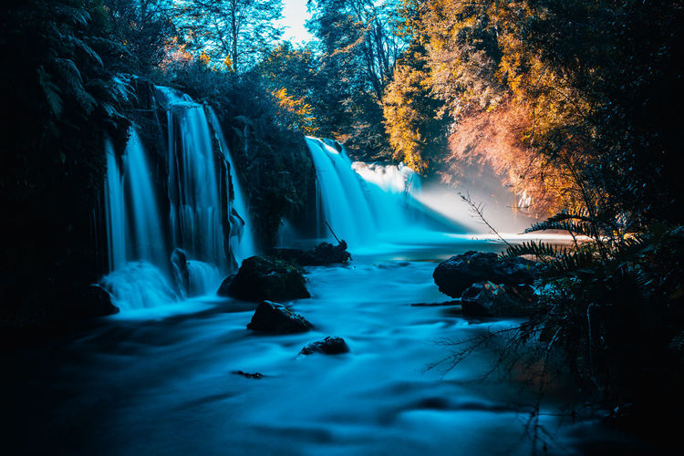 Pichi Ignao falls... EyeEmNewHere The Great Outdoors - 2018 EyeEm Awards Beauty In Nature Blurred Motion Change Day Flowing Flowing Water Forest Growth Land Long Exposure Motion Nature No People Outdoors Plant Power In Nature Rainforest Rock Scenics Scenics - Nature Tree Water Waterfall