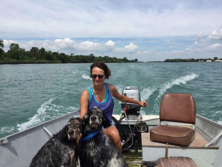 Back in the boat English Setter Dog In Boat Detroit River Boating Power Boats Michigan Summer Livingston Channel Pointer Dog Bird Dog Small Boat