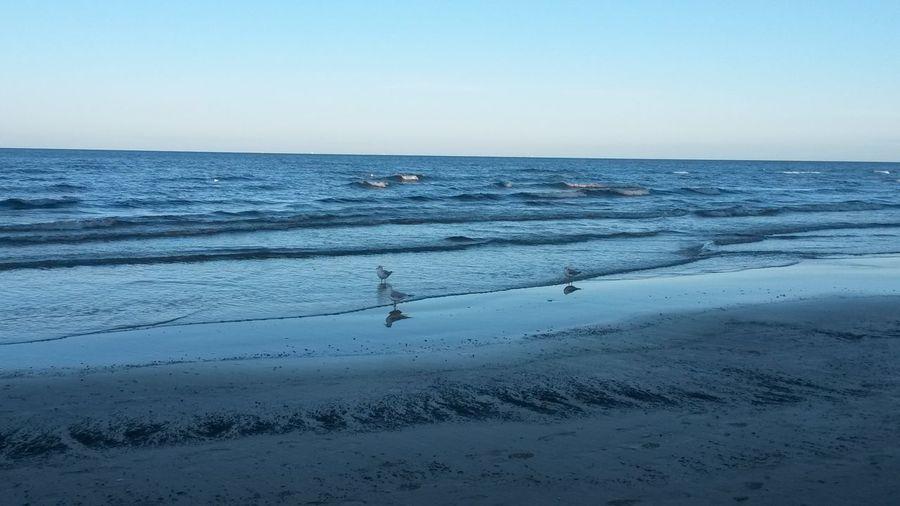 Baltic sea Enjoying Life relaxing