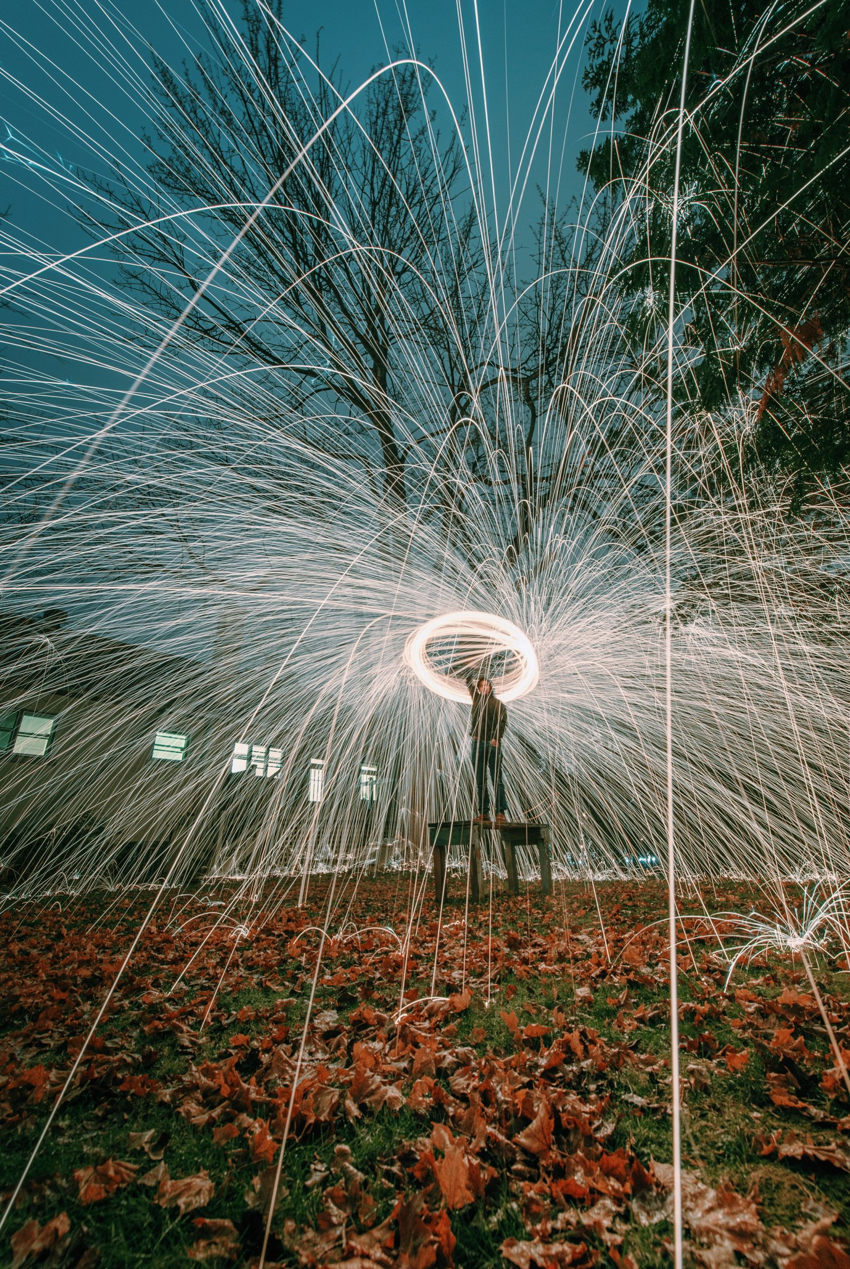 illuminated, night, lighting equipment, glowing, long exposure, nature, outdoors, water, motion, no people, low angle view, electricity, spider web, close-up, sky, light - natural phenomenon, beauty in nature, plant, pattern, celebration