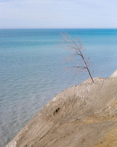 Tree, Dirt and Water Ansel Adams Inspired Nature Travel Beach Beauty In Nature Blue Day Horizon Horizon Over Water Idyllic Land Landscape Landscapes Nature No People Non-urban Scene Ocean Outdoors Sand Scenics - Nature Sea Sky Tranquil Scene Tranquility Water