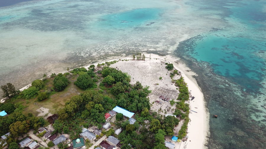 Koloray/Kolorai Island, Morotai Island Regency, North Maluku (Mollucas) Aerial Shot DJI Mavic Pro DJI X Eyeem Drone  Aerial View Beach Beauty In Nature Day Dji High Angle View Horizon Over Water Island Maluku  Maluku Utara Mavic Pro Morotai  Morotaiisland Nature No People Outdoors Scenics Sea Tree Water Wave