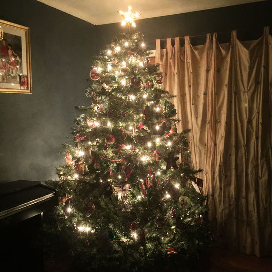 Christmas Tree Check This Out Taking Photos Enjoying Life Holiday Light Decoration Ornaments EyeEm Bestsellers