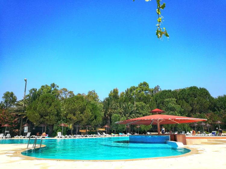 The pool Water Blue Tree Vacations Swimming Pool Beach Outdoors Summer Day Tourist Resort Sky Travel Destinations Clear Sky People Nature Large Group Of People Architecture Beauty In Nature Smartphonephotography Freshness Pool