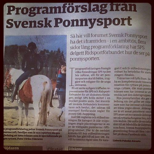 Vad hände SvRF? Svenskponnysport