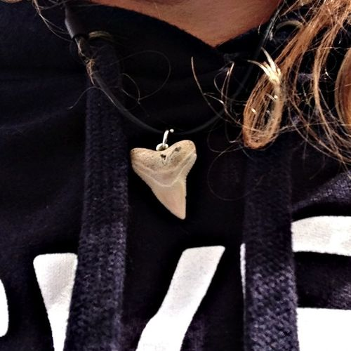 Jewelry Shark Tooth RAISED IN THE WAVES