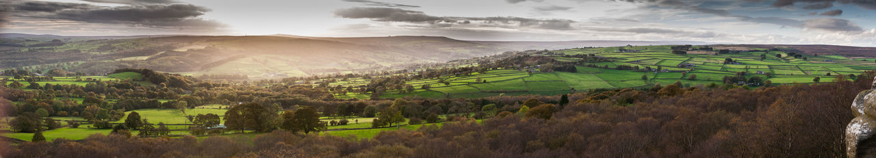 Panorama Rural Yorkshire,UK, Countryside Farming Golden Hour Sheep Wide