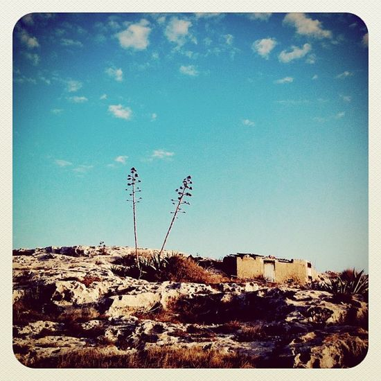 #almería #cabodegata #nijar #losescullos Almería Vuelingairgallery Cabodegata Níjar Losescullos