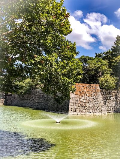 Tree Water Plant Sky Cloud - Sky Nature Day No People Sunlight Beauty In Nature Waterfront Green Color Growth Lake Outdoors Built Structure Flowing Water