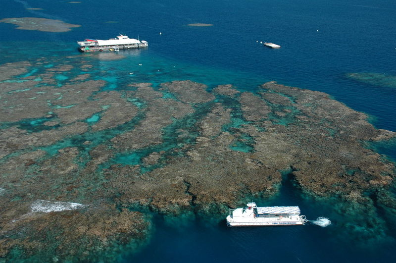 Australia Coral Day Great Barrier Reef Helicopter View  Marine World Nautical Vessel No People Ocean Outdoors Pacific Ocean Reef Scuba Diving Sea Water