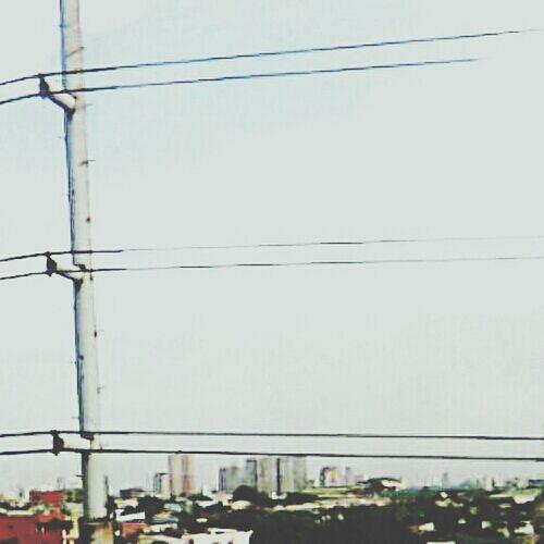 Urbanboxes Concretejungle Philippines