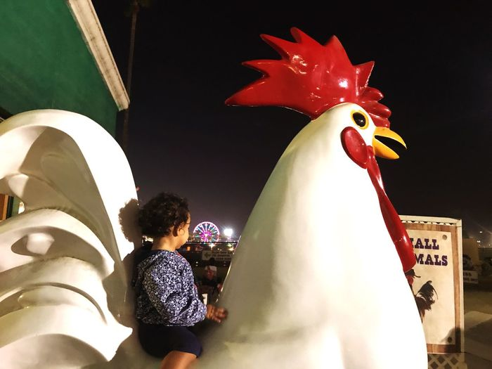 Chicken baby First Eyeem Photo