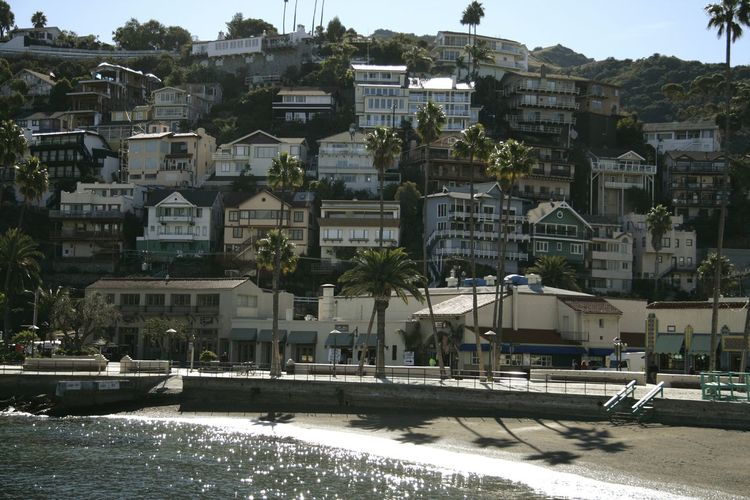 Catalina Island  California Travel Destinations Hello World Relaxing Crusieship Hanging Out