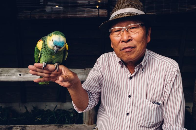 Old Japanese man with a parrot Old Man Japan Photography Japan KAWAGOE Portrait Of A Man  Portrait Photography Portrait Vertebrate Men Pets This Is Natural Beauty Streetwise Photography