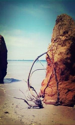 On The Beach Sea And Sky