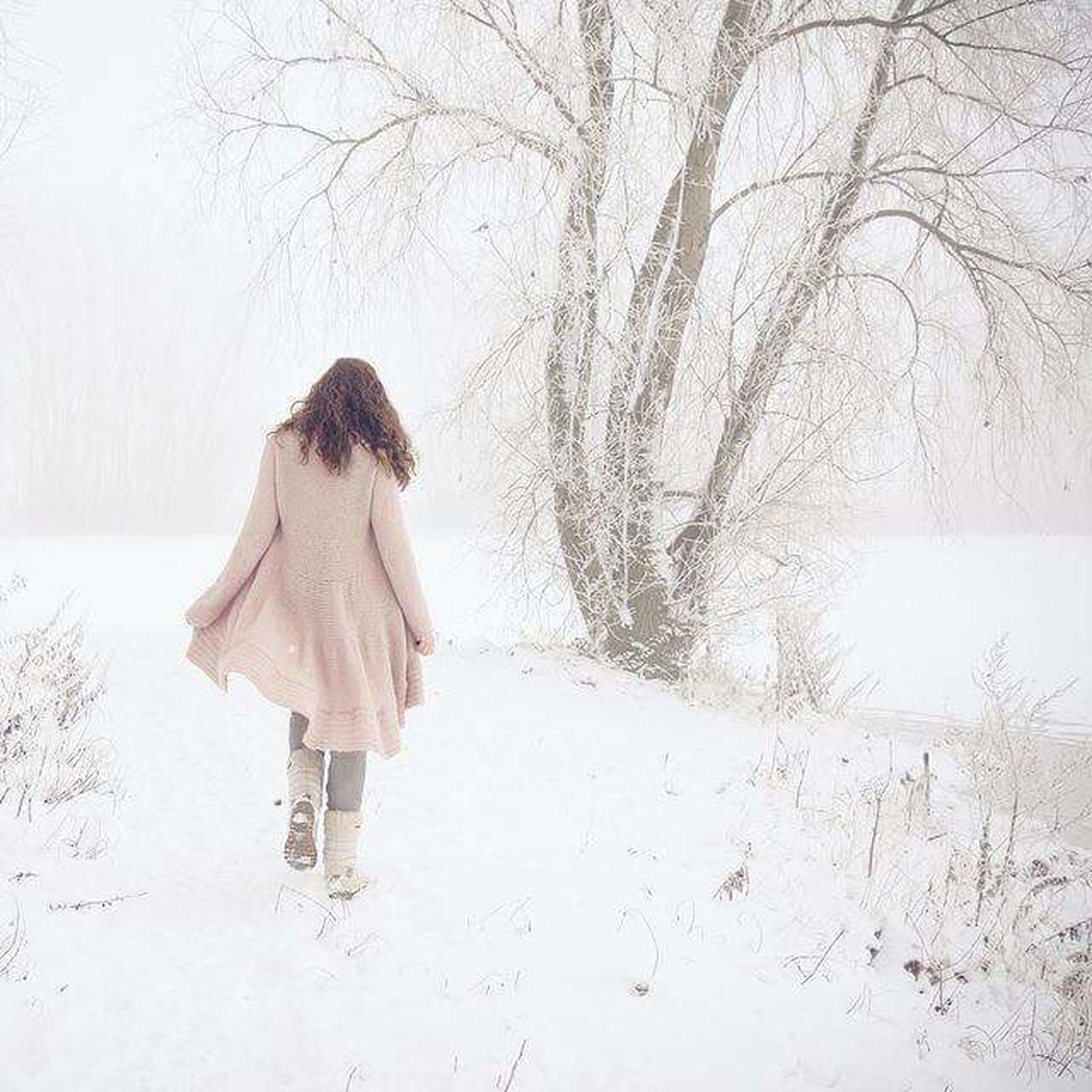 full length, lifestyles, rear view, tree, leisure activity, standing, walking, person, casual clothing, winter, season, bare tree, weather, nature, field, cold temperature, girls, day