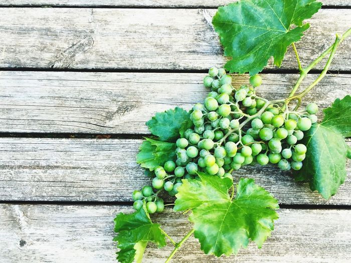 StillLifePhotography Still Life Grapes Wine Green Colorful Plant Rural Scene Wooden Life Is Beautiful Food Fruit Fruits Cooking Recipe Recipes Fine Art Photography