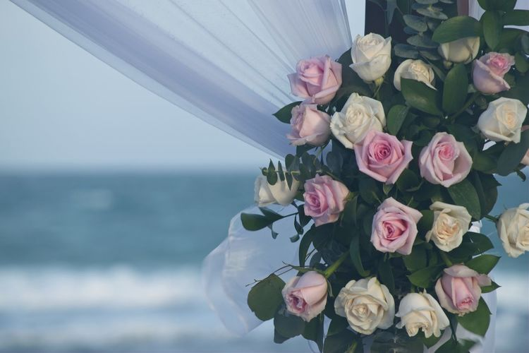 Close-up of rose bouquet against sea