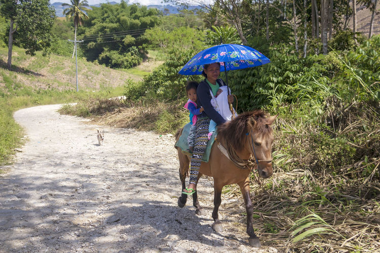 A mother with her two children riding a horse towards the center of one of the barangays in the Municipality of Lebak, Sultan Kudarat, Philippines, which is about 10 kilometers away. Their pet dog is following them. A New Perspective On Life Real People Umbrella People Adult Domestic Animals Lifestyles Day Women Mother And Child Mother And Daughter Mother And Baby Horse Horse Riding Dog Rural Scene Rural Life Rural Landscape Traveling Travel Photography EyeEmNewHere EyeEm Best Shots EyeEm Selects Outdoors Family