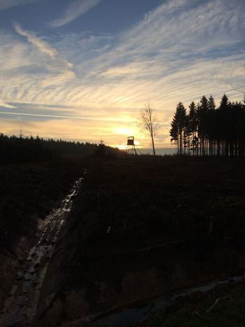 My Best Photo 2014 Ardennes Fagnes Forest Hunting