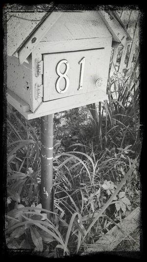 Walking Around Shades Of Grey Streetphotography Mailbox