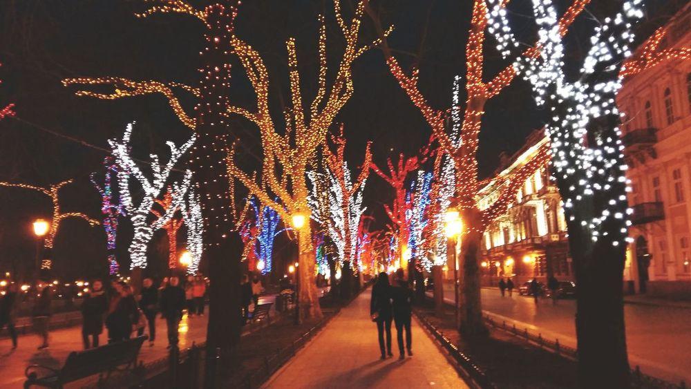 Odessa Evening Lights