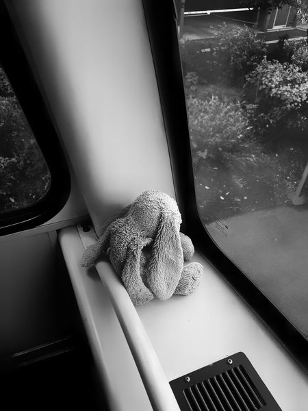 Indoors  Window No People Day Close-up Rabbit Toy Cuddly Toy Childs Toy Lone Lone Traveller Bus Journey Bus Looking Through Window Lost Alone EyeEm Best Shots - Black + White EyeEm Best Edits Lost In The Landscape