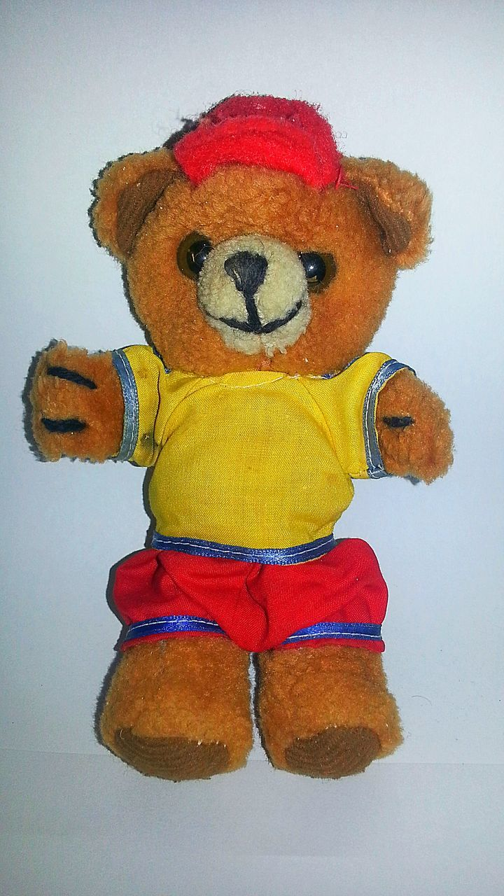 toy, stuffed toy, animal representation, childhood, teddy bear, no people, indoors, close-up, day